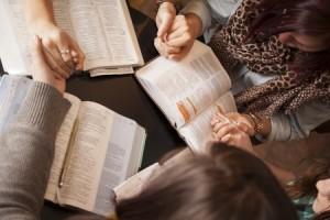 Photo: bible-study.